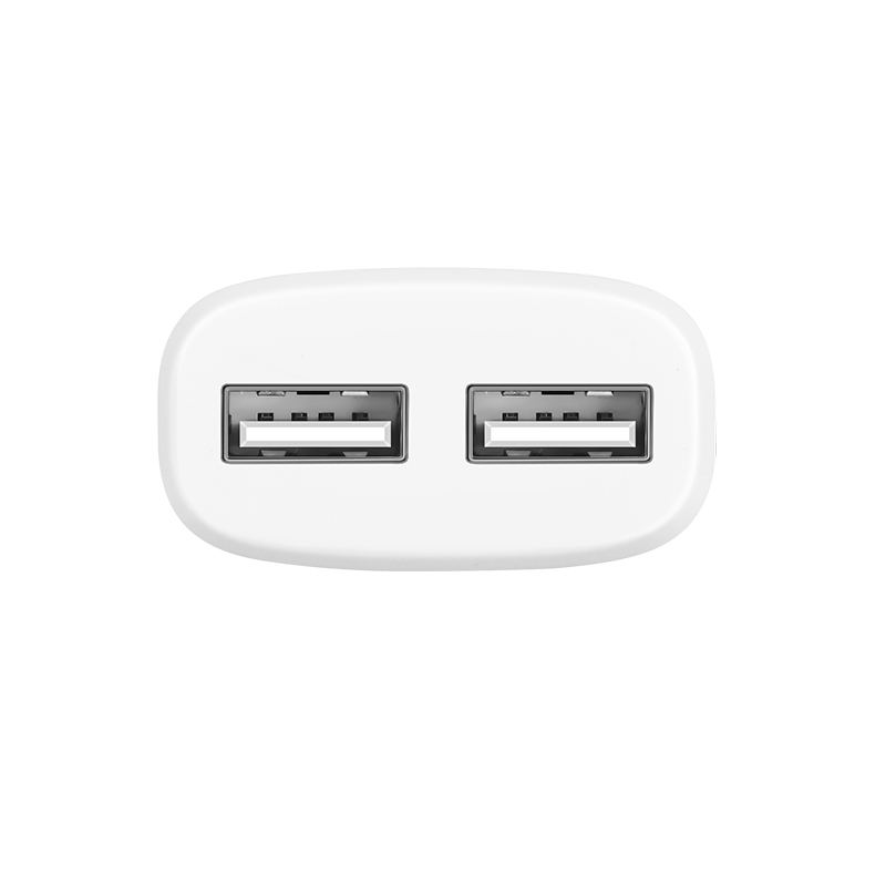 c12a intelligent dual usb charger ports