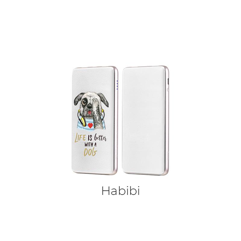 j13 habibi