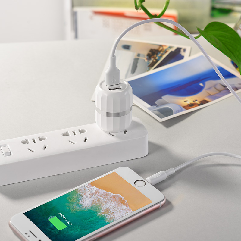 c41 wisdom dual port us charger set with lightning cable charging