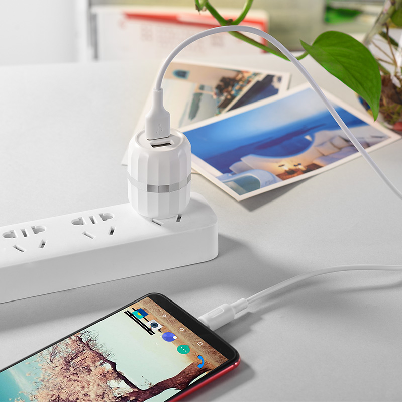 c41 wisdom dual port us charger set with type c cable charging