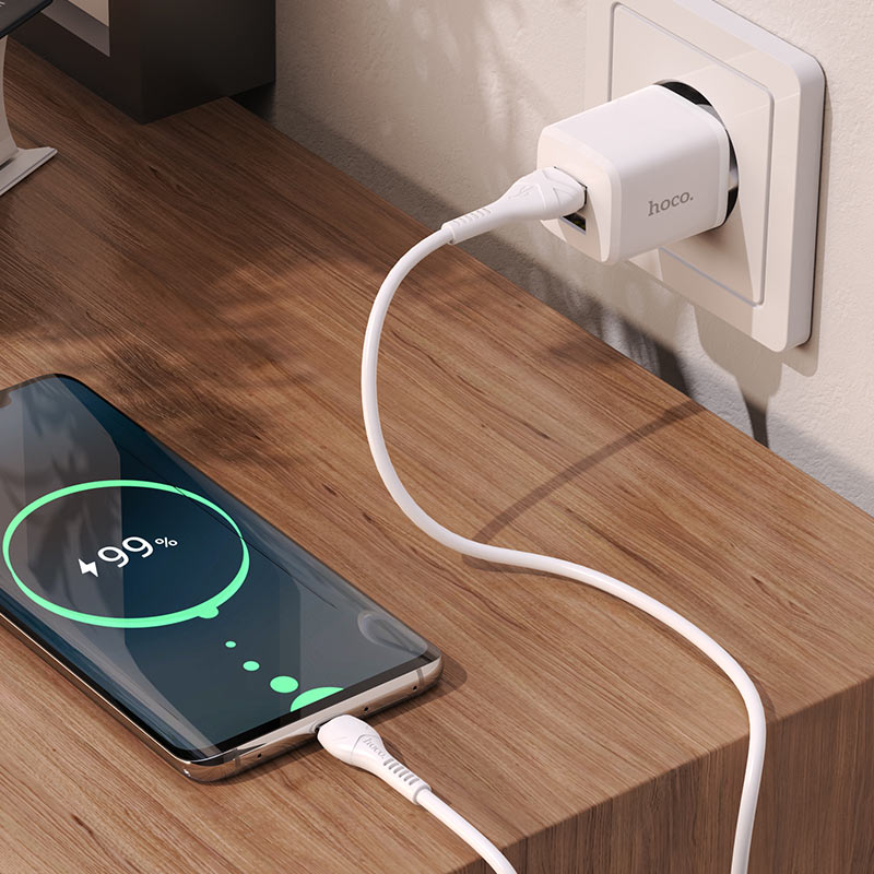 hoco n8 briar dual port wall charger eu for type c set interior